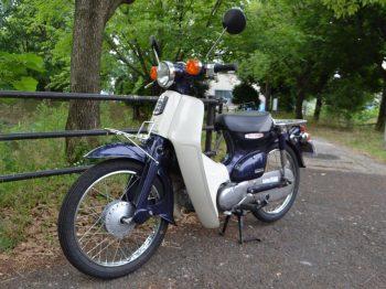 H50-Cub-AA01-8