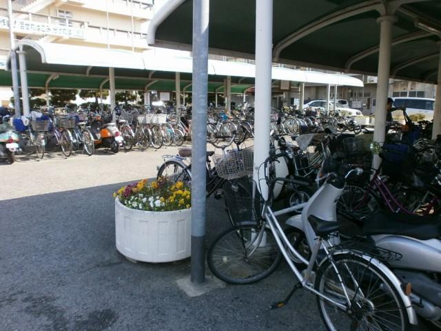 泉大津市役所駐輪場