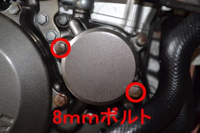 D-TRACKER250オイルフィルターのボルトを外す
